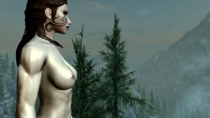 skyrim-hentai-art-–-knight,-female-only,-warrior,-red-hair.