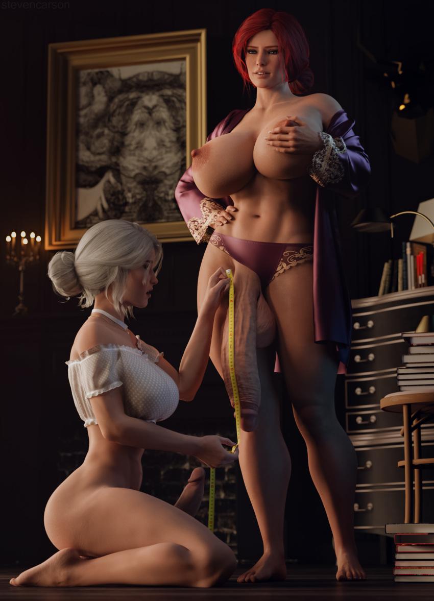 witcher-xxx-art-–-kneeling,-penis,-penis-out,-erection.